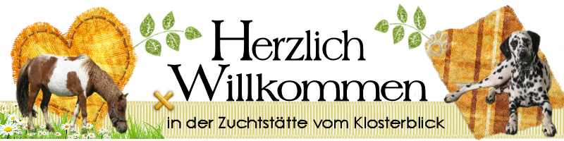 Gästebuch Banner - verlinkt mit http://www.vomklosterblick.de